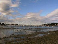 Riverhead Beach